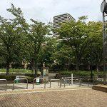 【ポケモンの巣】大島小松川公園でルージュラを捕獲してきました