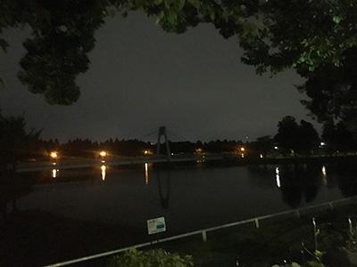 【ポケモンの巣】水元公園でゴースを捕獲してきました(※9月27日にケーシイの巣に変更)
