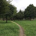 【ポケモンの巣】篠崎公園でパウワウ&サイホーンを捕獲してきました(※9月27日にオムナイト&マンキーの巣に変更)