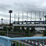 【ポケモンの巣】オムナイトの巣西葛西少年野球広場&シェルダーの巣、新長島川親水公園に行ってきました(※9月27日にマンキー&ピッピの巣に変更)ナイトの巣、西葛