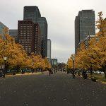 【ポケモンの巣】皇居外苑&感謝祭イベントで物凄い事になっている錦糸町駅前に行ってきました